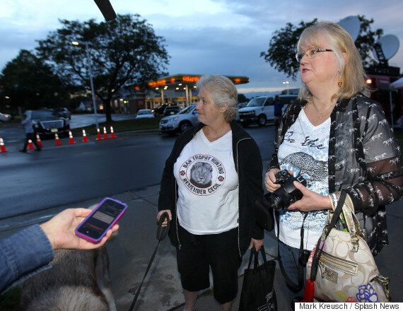 Walter Palmer, Lion-Killing Dentist, Returns To Work Flanked By Security, Protesters And