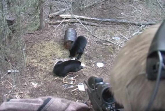 Footage Of Nine-Year-Old Boy Shooting Dead Bear On 'Birthday Hunting Trip' Branded