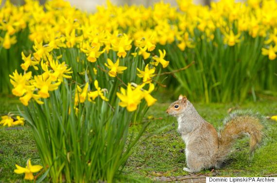 Easter Weather Forecast UK: Snow Gales And Arctic Temperatures To Mark Arrival Of
