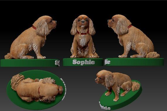 Pets in 3D: Why Pet Lovers Are Embracing 3D