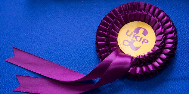 LLANDUDNO, WALES - FEBRUARY 27: UKIP Rosette at the UKIP Spring Conference on February 27, 2016 in Llandudno,...