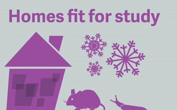 Swansea Student Housing: The Dark