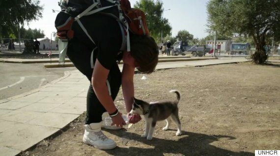 Refugee Crisis: Syrian Boy And His Puppy Won't Be Separated By Miles