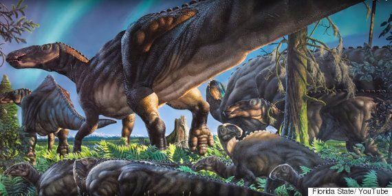 Dinosaur Fossils Reveal New Species And Point To A 'Lost World' In Alaskan