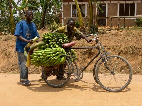 Let's Not Forget Seasonal Hunger in Sustainable Development