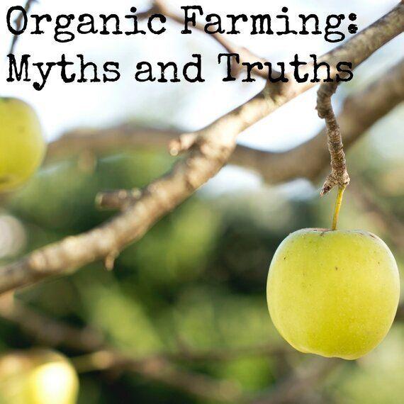 Organic Farming: Myths and