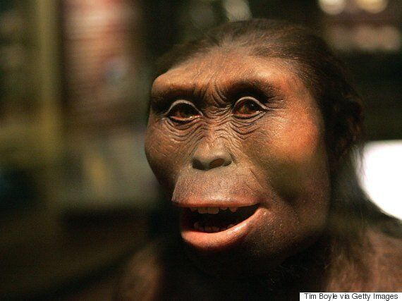 New Ancient Human Species Discovered By