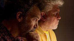 Com o marcante 'Dor e Glória', Pedro Almodóvar se reafirma como mestre do