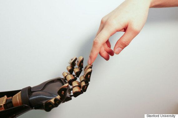 Scientists Create 'Artificial Skin' Capable Of Sensing