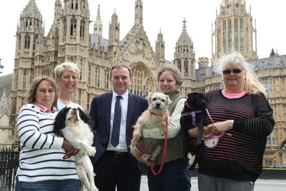 The Countdown to Compulsory Microchipping of