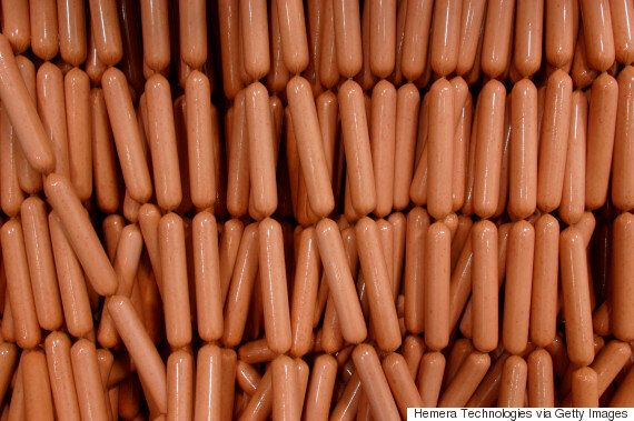 Vegetarian Hot Dogs Could Contain Meat And Human