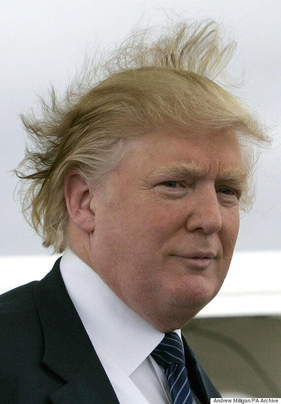 Donald Trump's Hair Announces Candidacy For President Of The United