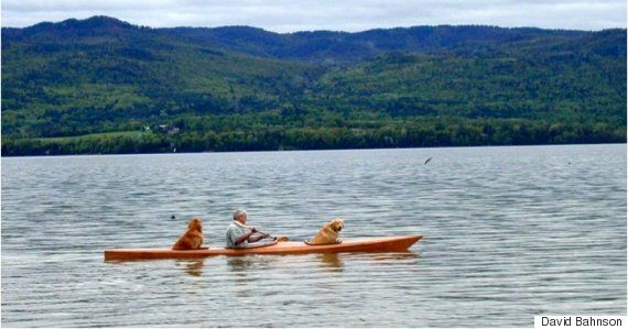 Man Builds Kayak With Two Dog Shaped Holes And The Result Is