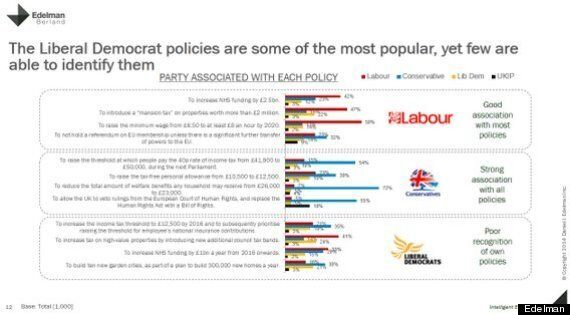 Barely Anyone Knows What The Liberal Democrats' Policies