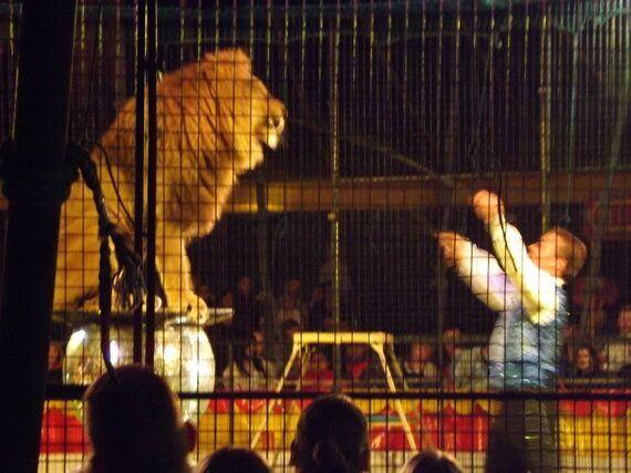 Edinburgh Fringe Gets Circus Hub But I'd Rather See Some