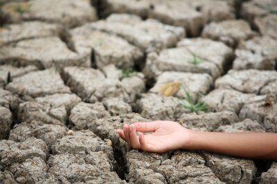 Environmental Justice, Activism and Democracy Under