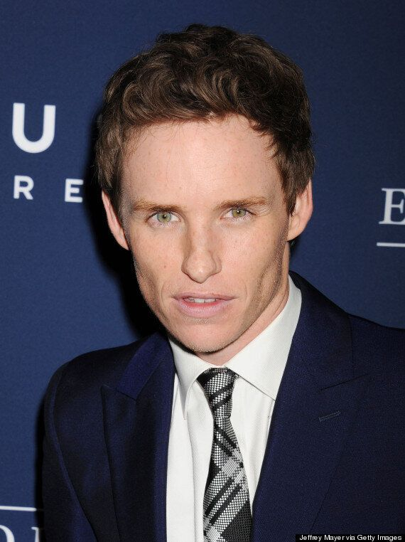 Eddie Redmayne Could Have Played Christian Grey In '50 Shades Of Grey'... If Only E.L. James Had Let...