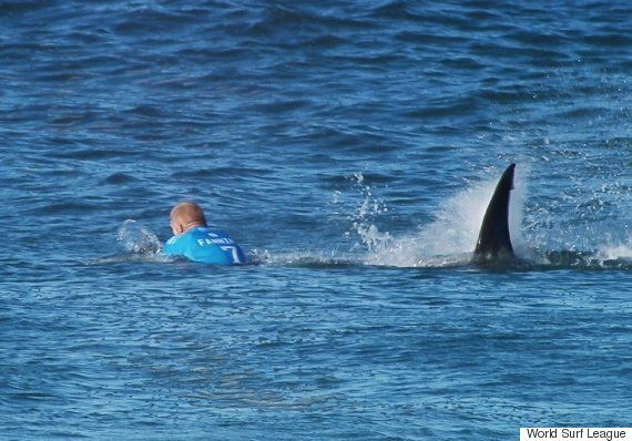 Mick Fanning Shark Attack Video Captures Amazing Escape For Australian Surfing