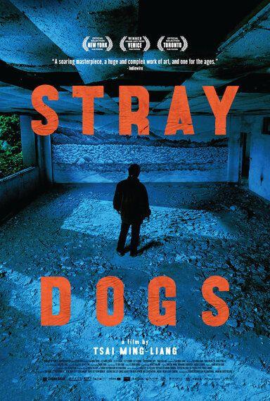 Film Reviews :Rosewater : Spooks - The Greater Good : Girlhood : Phoenix : Futuro Beach : Stray Dogs...