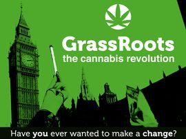 GrassRoots: The Cannabis
