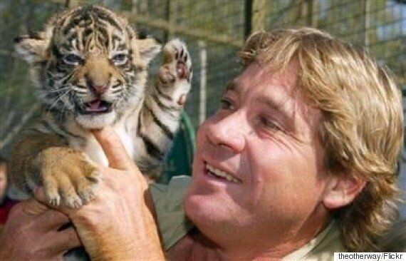 Bindi Irwin Turns Seventeen And Confirms: 'There's Someone Special in My