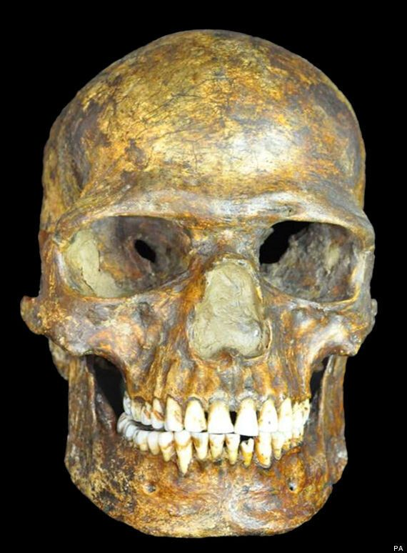 Humans And Neanderthals Interbred, 36,000-Year-Old Genome