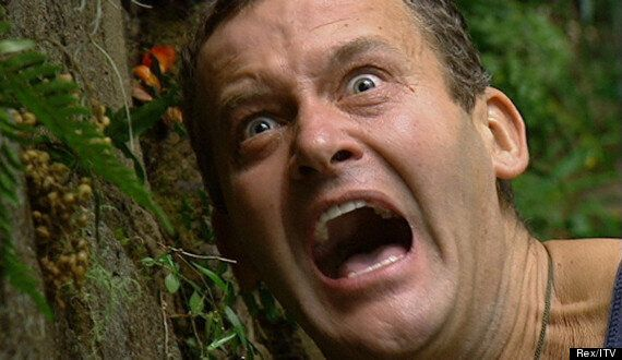 'I'm A Celebrity... Get Me Out Of Here': The Best Bushtucker Trials, Featuring Helen Flanagan, Joey Essex...