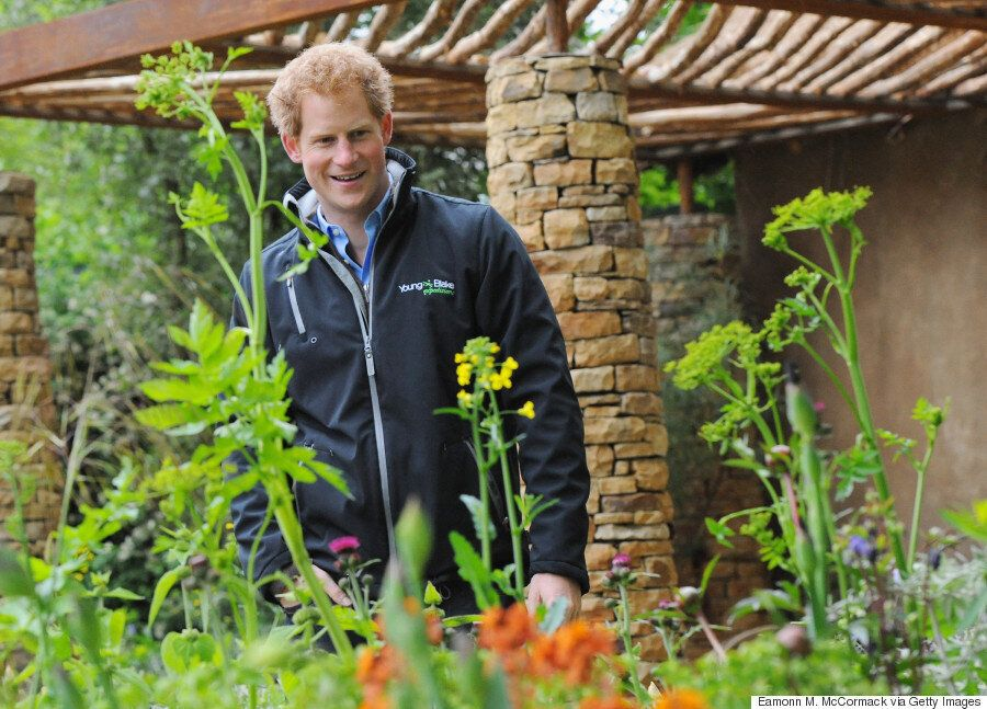 Chelsea Flower Show RHS Opening Times, Ticket Prices, Pictures And