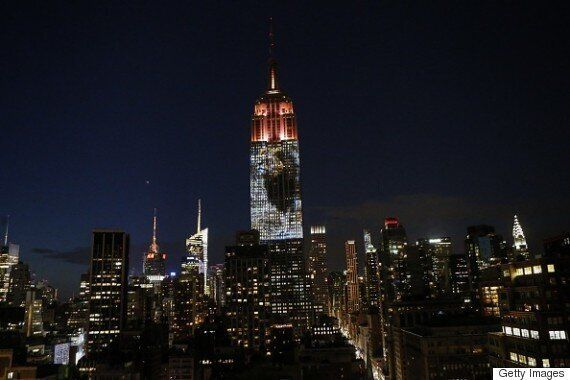 Empire State Building's Cecil The Lion Projection Called 'Embarrassing' For Neglecting Black Murder