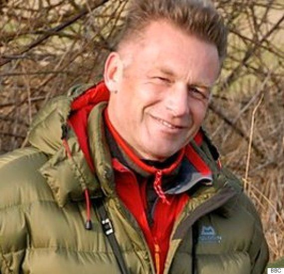 Springwatch's Chris Packham Wants To See Wolves Reintroduced To Britain's