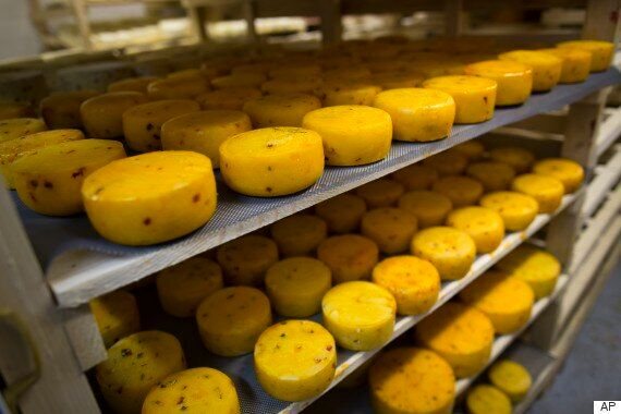 Putin Government Steamrollers Cheese To Mark One-Year Anniversary Of Ban On Western