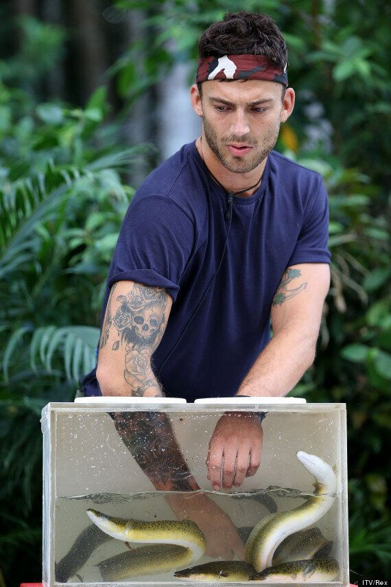 'I'm A Celebrity': Jake Quickenden Scoops Ten Stars In The 'Critter Cube' Bushtucker Trial