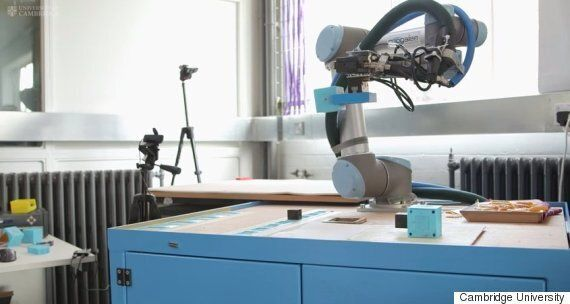 Robots Can Now Create Their Own 'Species' Cambridge Scientists