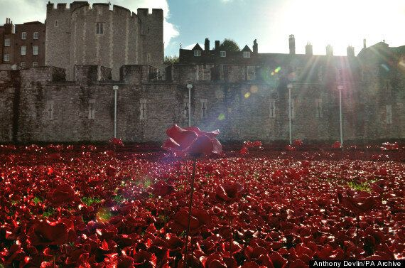 Tower Of London Poppies 'Picked' In Striking Time-Lapse
