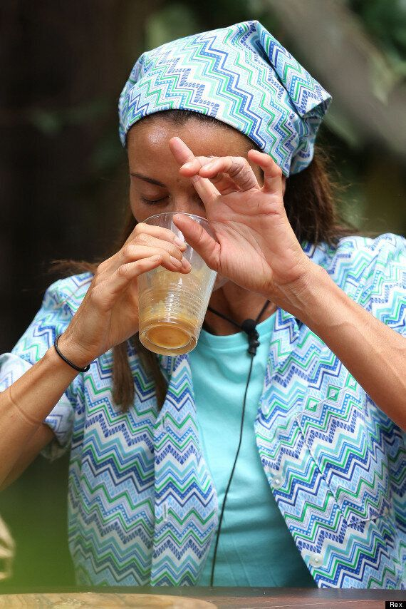 'I'm A Celebrity': Melanie Sykes Drinks A Bull Penis 'Jaeger-Vom', And Carl Fogarty Downs A Glass Of...
