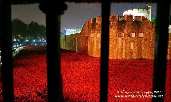 Remembrance Poppies: Flower Power at the London