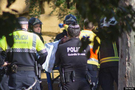 'Neo-Nazi' Man Mauled By Lion At Barcelona