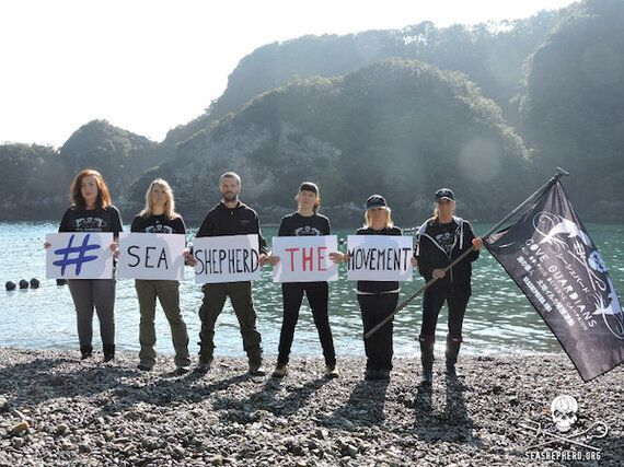 Sea Shepherd Activist Melissa Sehgal Denied Entry Into Japan to Document Taiji Dolphin