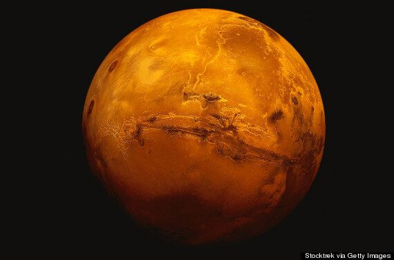 Life On Mars: What Do We