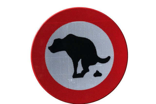 No dog feces, sign