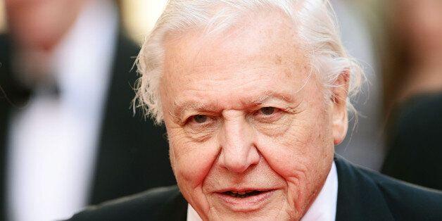 LONDON, ENGLAND - MAY 18: Sir David Attenborough attends the Arqiva British Academy Television Awards...