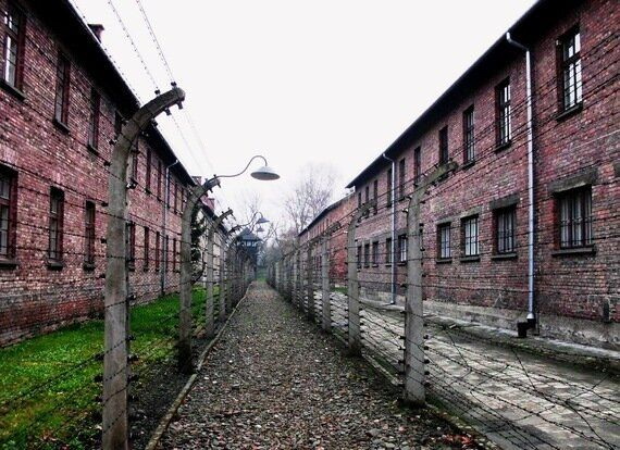 The Intense Humming Of Evil' - Experiencing Auschwitz