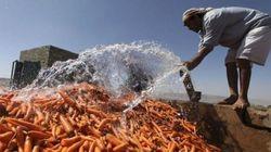 「誰一人取り残さない」未来に向けて、深刻化する中東の水不足を「エアコン排水」が救う