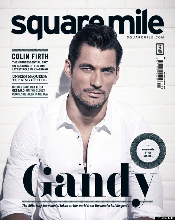 David Gandy Reveals Why He Turned Down Lead Role In 'Fifty Shades Of Grey', Leaving Space For Jamie
