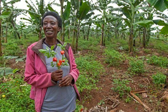 Lean in, Rwanda