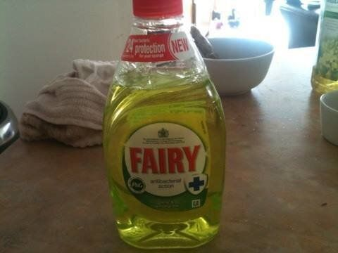 Can You Cook With Fairy