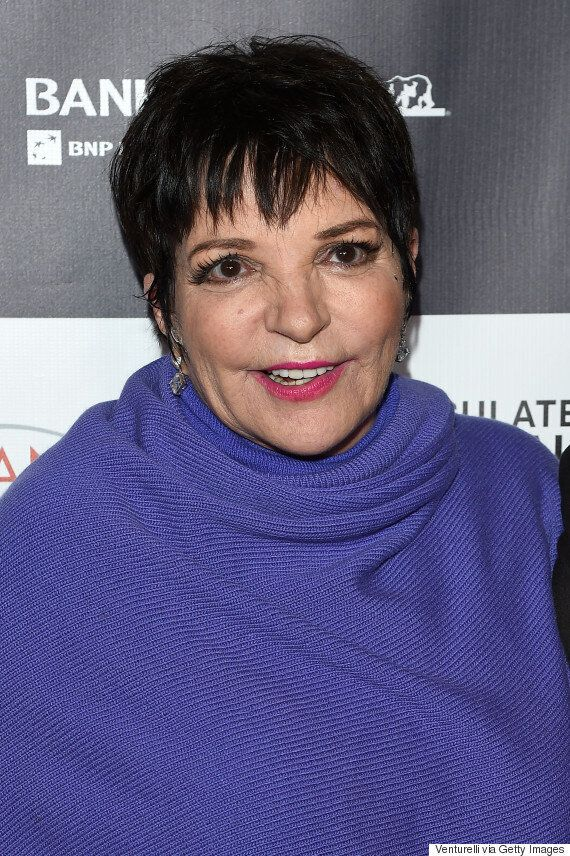 Liza Minnelli 'Making Excellent Progress' After Checking Into Rehab To Treat