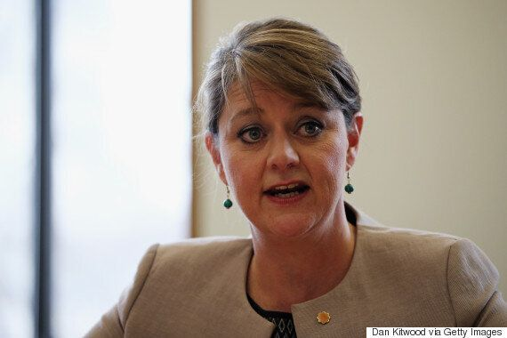 Plaid Cymru Leader Leanne Wood: Who Is She And What Is The Party