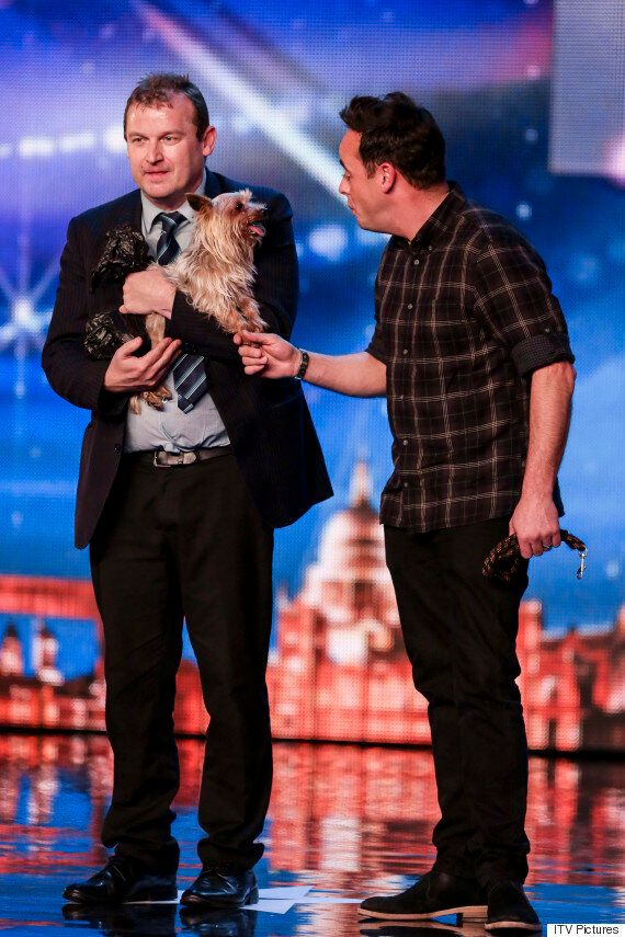 'Britain's Got Talent': Ant Attacked By Tiny Terrier Max During First Episode