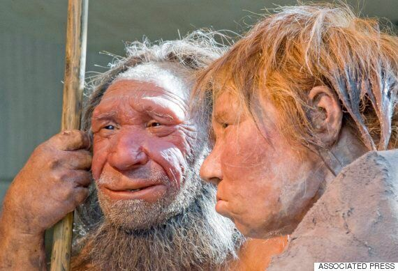 Neanderthals Who Mutilated Corpse Of Child May Have Been